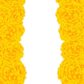 Yellow marigold border