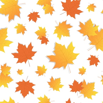 Yellow marple leaf seamless pattern autumn