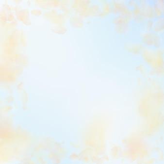 黄橙色の花びらが落ちます。幻想的なロマンチックな花のフレーム。青い空の正方形の背景に空飛ぶ花びら。愛、恋愛の概念。奇妙な結婚式の招待状。