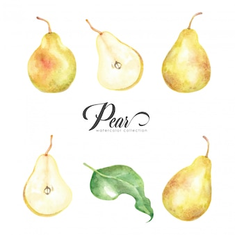 Yellow pear style watercolor collection