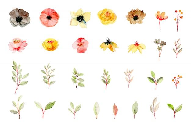 Желтый розовый цветок и зеленые листья коллекции элементов