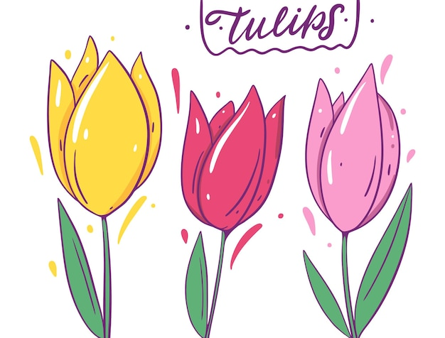 黄色、赤、ピンクのチューリップ。アウトラインと漫画のスタイル。孤立。
