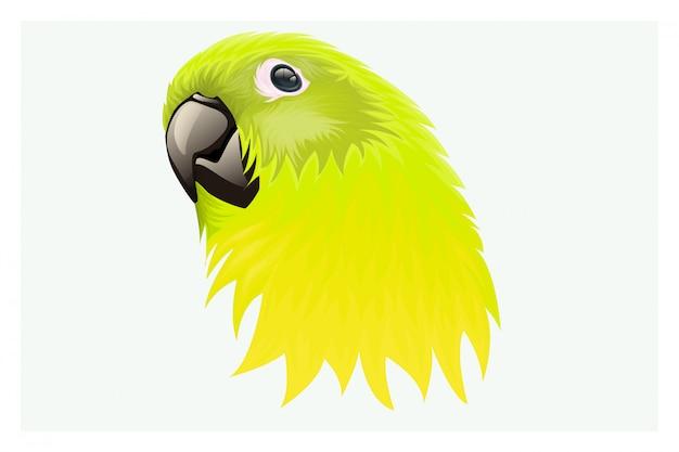 Желтовато-зеленый пернатый попугай