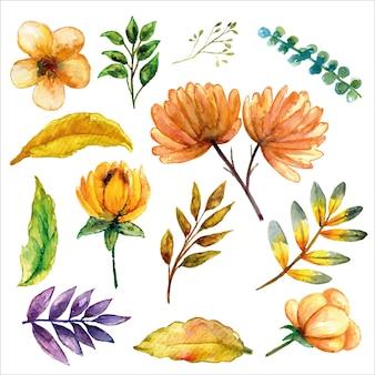 さまざまな花や葉と黄色がかったセットの水彩画