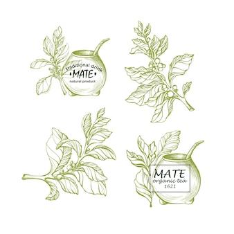Йерба матэ национальный традиционный напиток эрбальный чай с металлической соломкой из тыквы set
