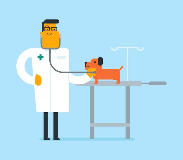Young caucasian white veterinarian examining dog.