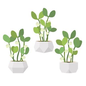 Молодые свежие зеленые ростки в белых горшках. новая жизнь растений. плоский рисунок