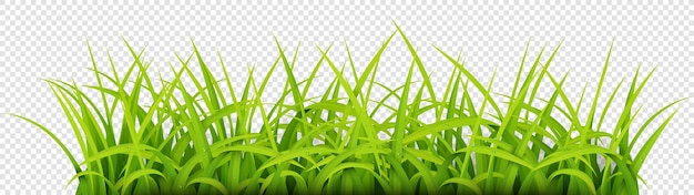 Знак с текстовым пространством young grass