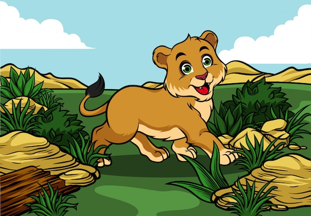 Young lion walking in the jungle