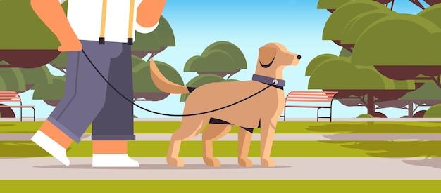 公園で犬と一緒に歩く若い男男性の所有者とペットの概念の風景の背景の水平クローズアップの肖像画のベクトル図とかわいい家畜の友情