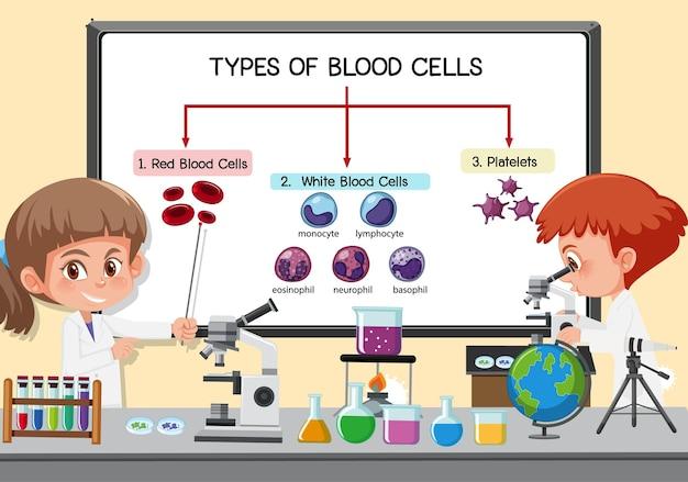 研究室のボードの前で血球の種類を説明する若い科学者