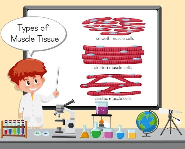 Молодой ученый объясняет типы мышечной ткани перед доской с лабораторными элементами