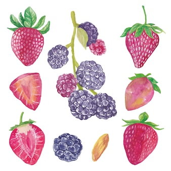 Yummy cute watercolor blueberry and strawberry fruits collection