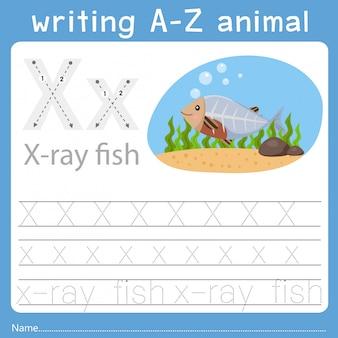 Z動物xを書くのイラストレーター