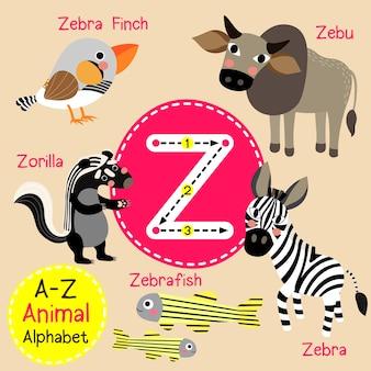 手紙z動物園のアルファベット