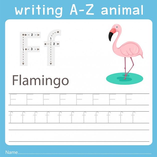 フラミンゴのz動物を書くイラストレーター