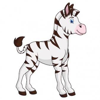 A zebra animal cartoon