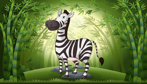 A zebra in bamboo forest