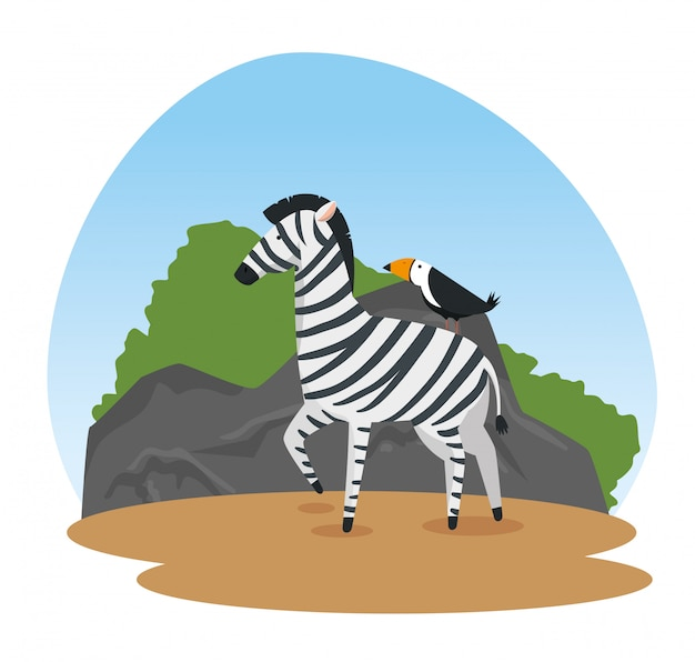 Zebra and bird wild animals reserve