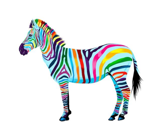 Зебра из разноцветных красок всплеск акварели цветной рисунок реалистичный