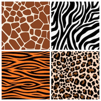 Zebra, giraffe and leopard patterns