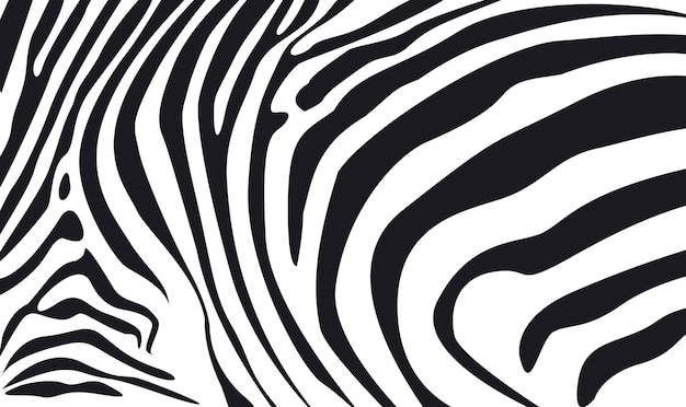 Zebra skin textured background illustration