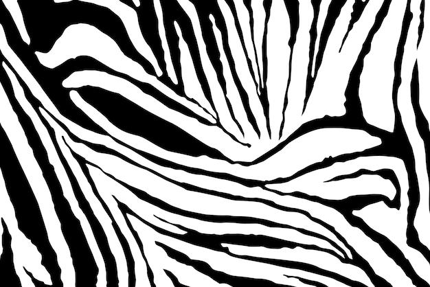 얼룩말 줄무늬 패턴 벡터