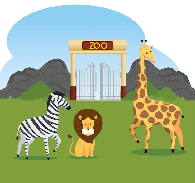 Зебра со львом и жирафом, заповедник диких животных
