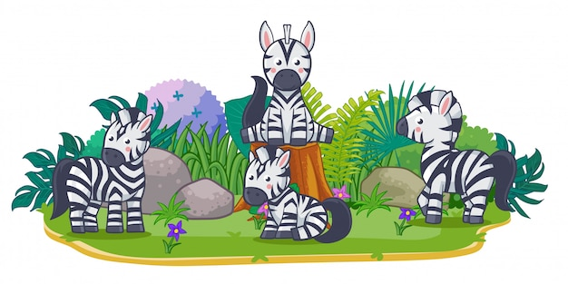 Zebras are playing together in the garden