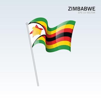 회색에 고립 된 짐바브웨 흔들며 깃발