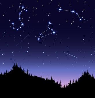 Созвездия зодиака со сверкающими звездами