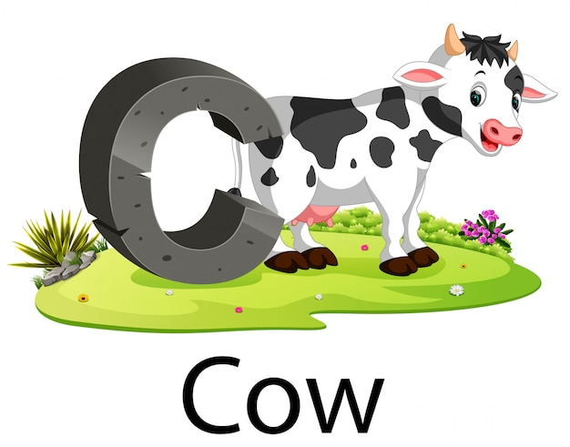 Zoo animal alphabet c for cow with the animal beside