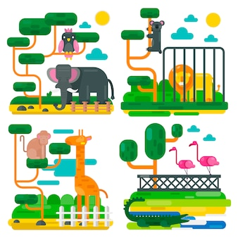 Zoo animals and birds cartoon vector illustration