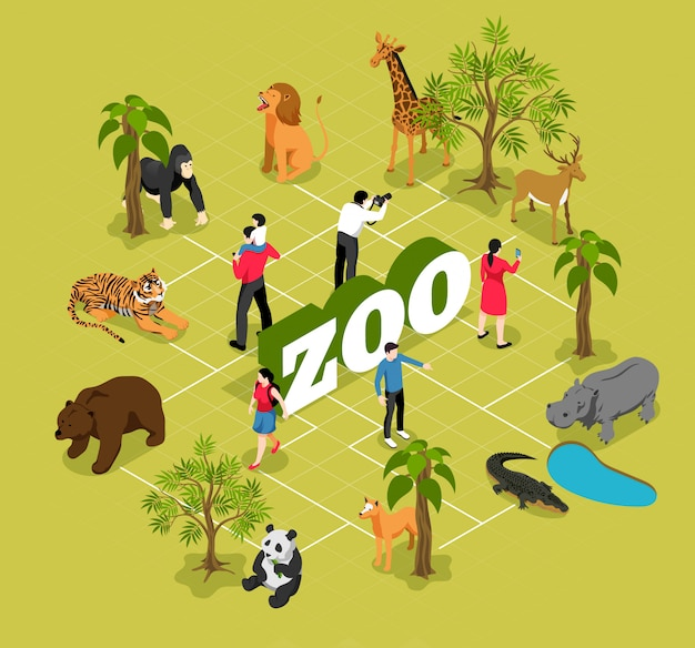 Zoo isometric flowchart with animals near trees and pool and visitors on olive