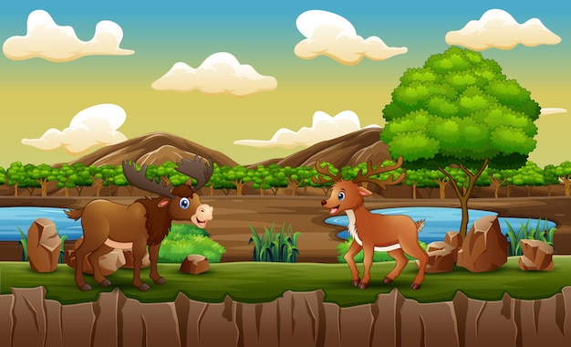 Зоопарк с лосями и оленями, играющими в открытой клетке