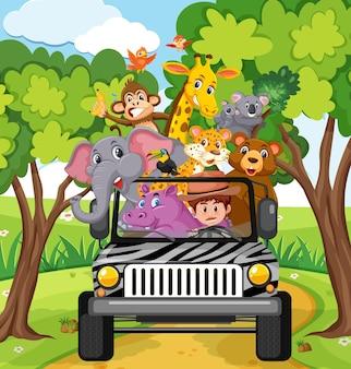 차에 행복한 동물들이 있는 동물원 장면
