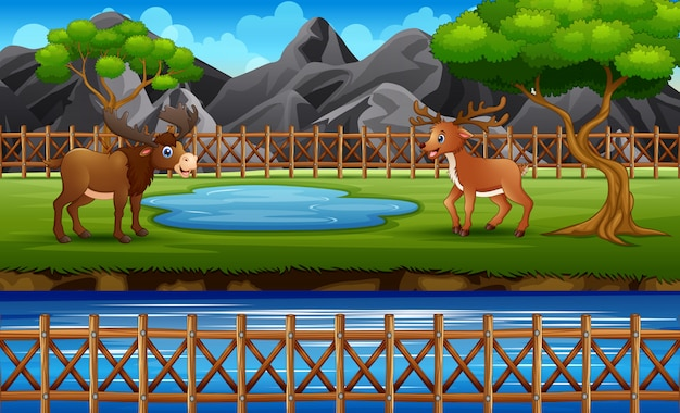 Zoo scene with a moose and deer playing in open cage