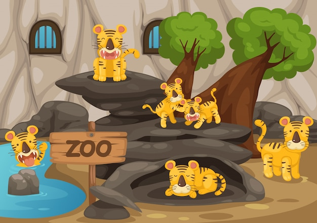 Zoo and tiger vector