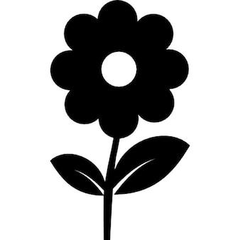 Blume in schwarz