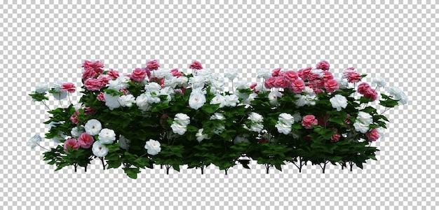 3d render brush tree isoliert