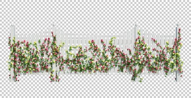 3d render ivy pflanzen isoliert