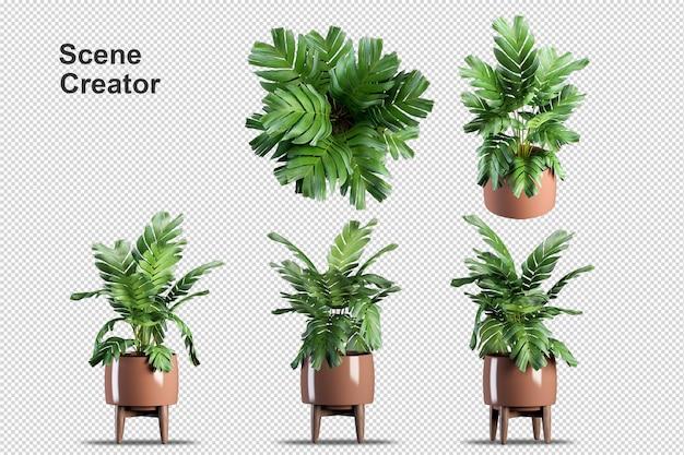 3d-rendering der isometrischen pflanze
