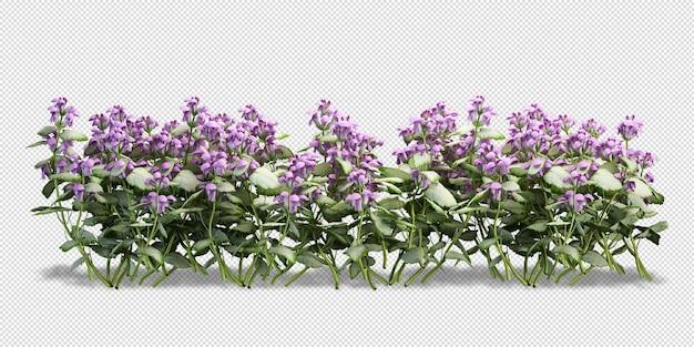 3d-rendering verschiedener arten von buschanordnungen
