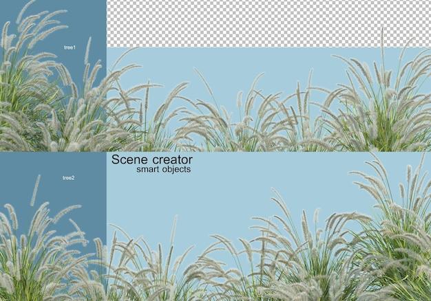 3d-rendering verschiedener baumarten