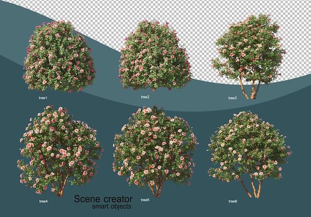 3d-rendering verschiedener baumdesigns