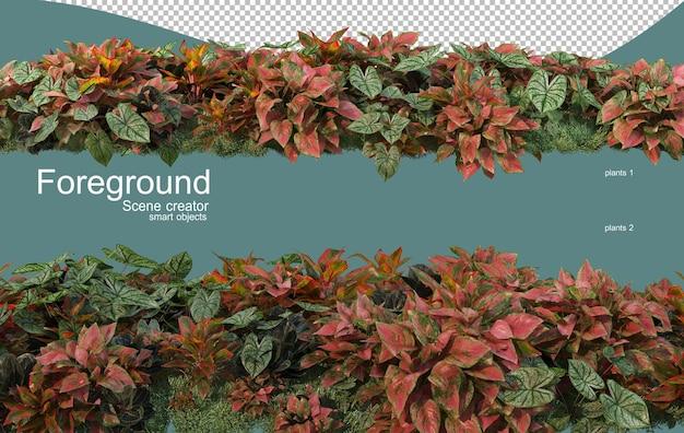 3d-rendering von pflanzen im vordergrund design