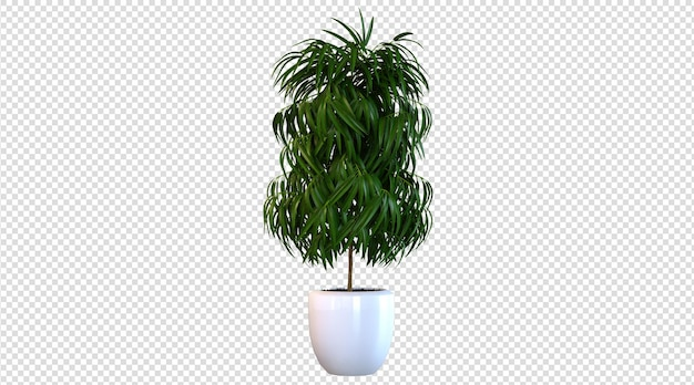 3d-rendering von pflanzen