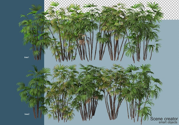 3d-rendering von schönen pflanzen in verschiedenen winkeln isoliert