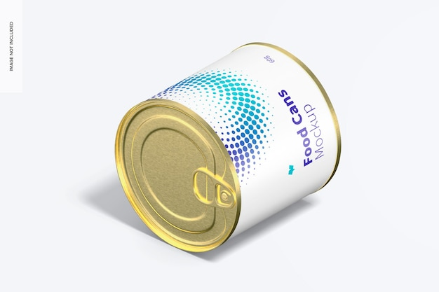 60g lebensmitteldosen-modell, isometrische ansicht von links