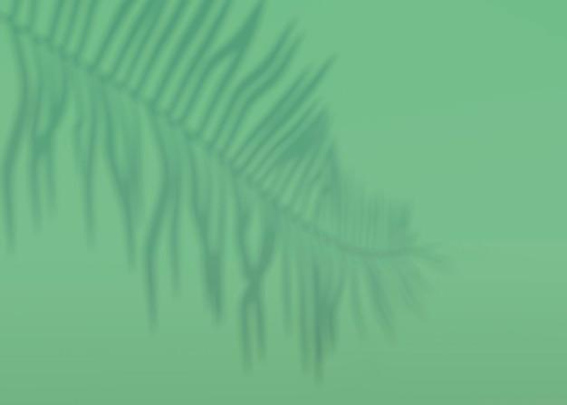 Abstrakter hintergrund von schattenpalmenblättern an einer wand. 3d-rendering.